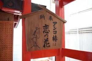 浜松有楽街黒田神社アンコ椿は恋の花
