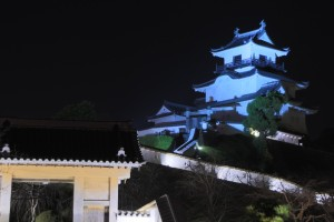掛川城のライトアップ